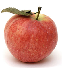 Foods High In Carbs Low In Protein Apple